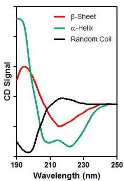 Circular Dichroism Spectra of Alpha Helix, Beta Sheet and Random Coil